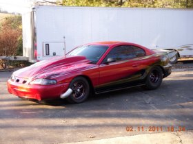 Mustang Body