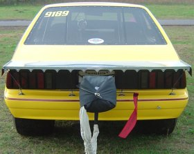 "1979-1993 Mustang 15"" Hatch Wing"